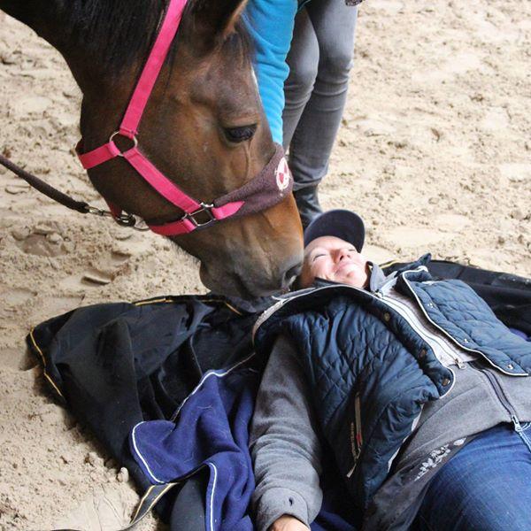Equine Assisted Facilitator Training